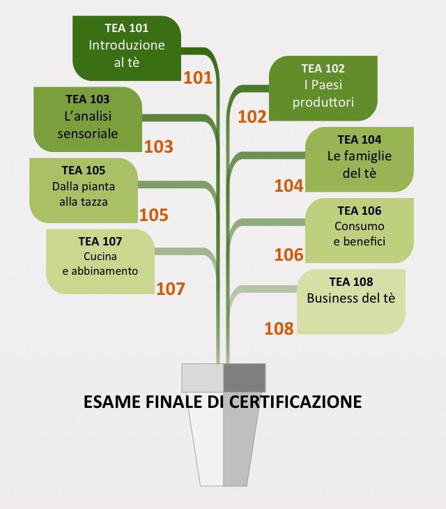 esame certificazione tea sommelier
