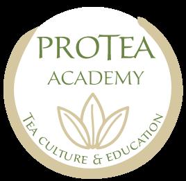 logo protea academy