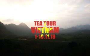 Vietnam Tea Tour